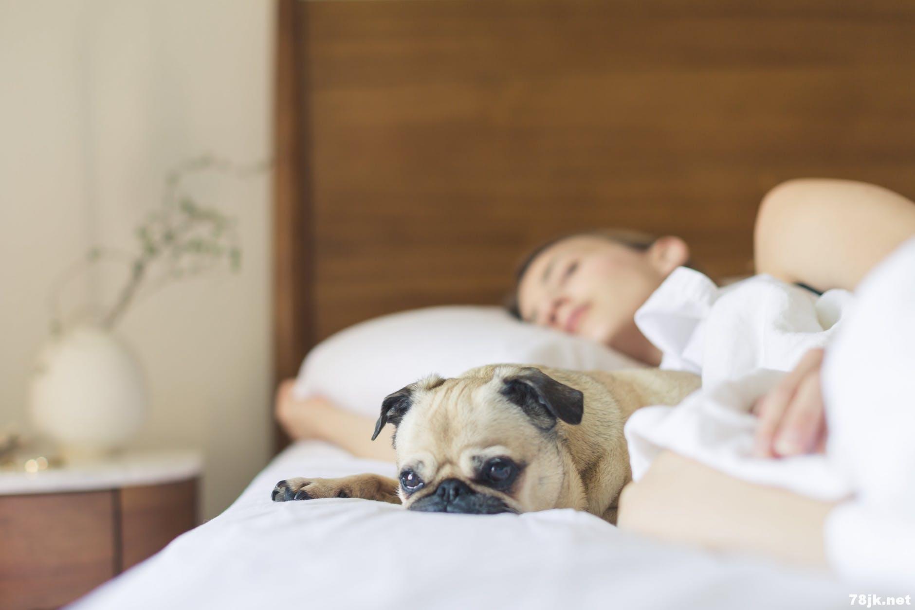 72 小时不睡觉的危害:炎症、幻觉、大脑受损