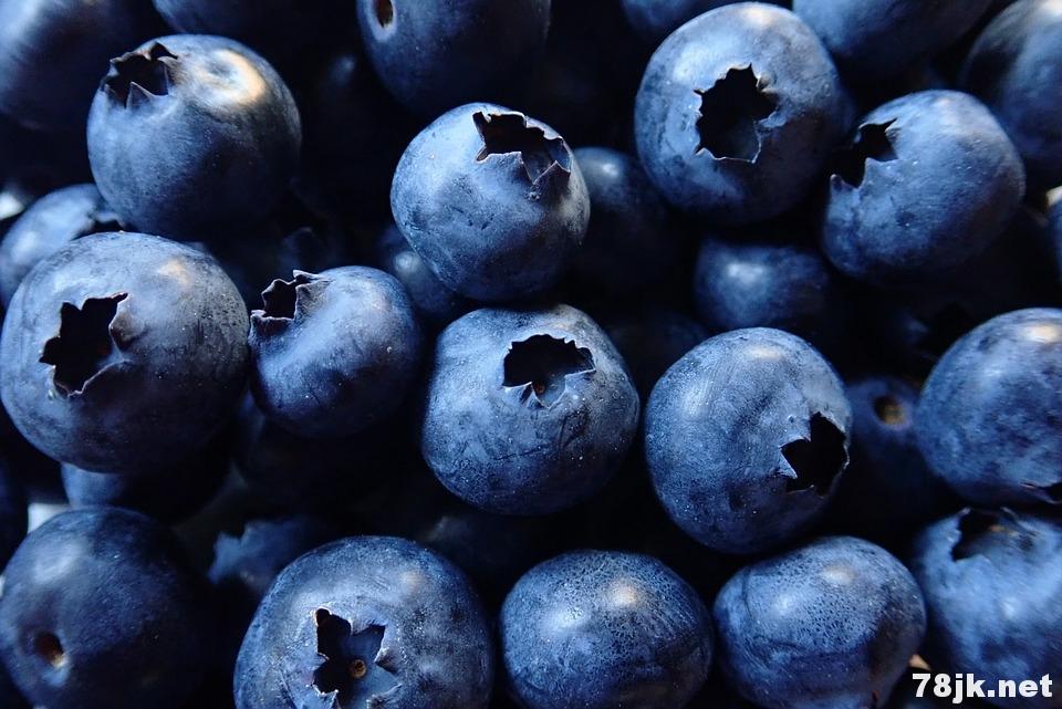 11 个蓝莓的营养价值和好处