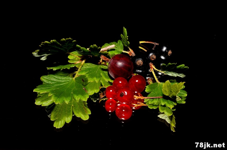 黑加仑(黑醋栗)的营养价值、功效与作用有哪些?