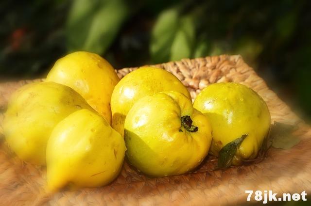 木瓜酵素的功效与副作用