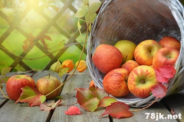 糖尿病可以吃苹果吗?有什么好处和坏处?