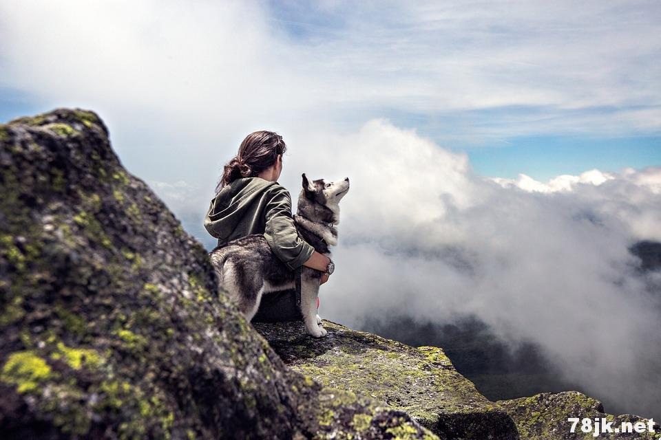 养狗的 11 个意想不到的健康好处